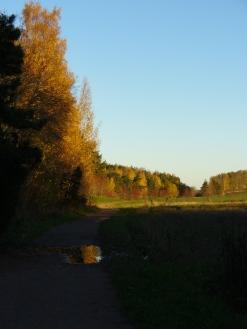 Picture 052 Grave Mound Path