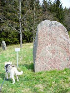 Uppland's Runestone #808