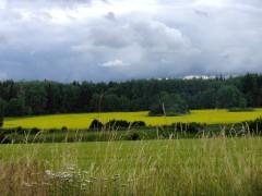 July 6 - Gamla Börje Road