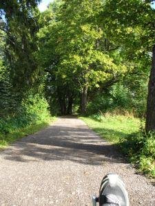 Found The River Path!
