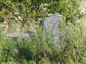 Broken and Missing Runestone