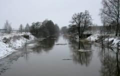 Chunks of Ice & Reeds Rushing Downstream