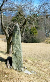 Another Standing Stone