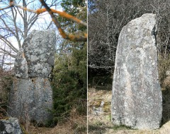 Uppland Runestone #444 (Left) & 445 (Right)