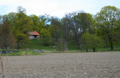 Stone Building & Field