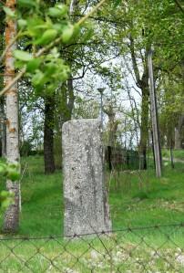 Uppland's Runestones #801