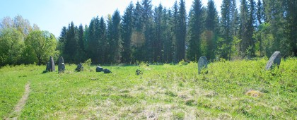 Second Group of Stones with Runestone