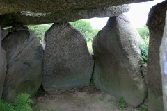 Under the Sprove Dolman's Capstones