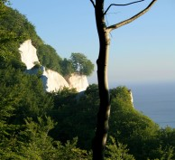 Look! White Cliffs!