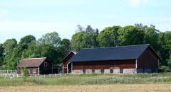 Stone & Wood Barn