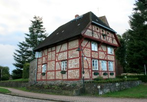 A Beautiful Luthier's Shop