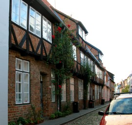 Lovely Buildings with Roses