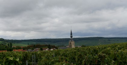 Something tells me this is champagne country