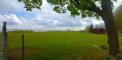 Pasture Mounds
