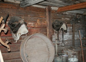 Saddles & Tools in Stable