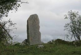 Uppland Runestone #876