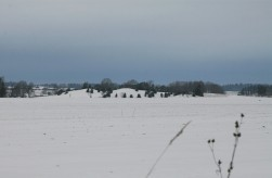 Vallsgärde Grave Mounds/Field