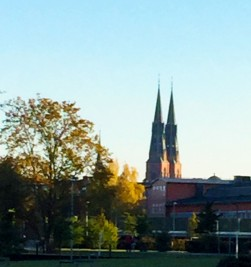 What 2:30 pm looks like in October in this part of Sweden