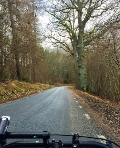 Pretty Road