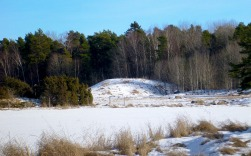 Possible Burial Mound?