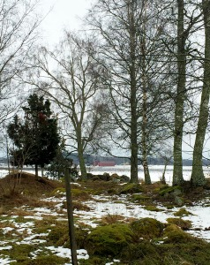 I love a snowy winter landscape! Did I mention that?