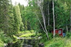 Lovely little stream just southwest of Sävar.