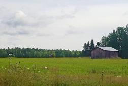 Swedish scenery