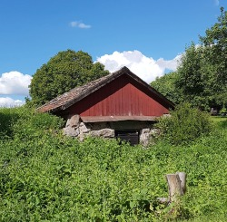 Random old root cellar along the way.