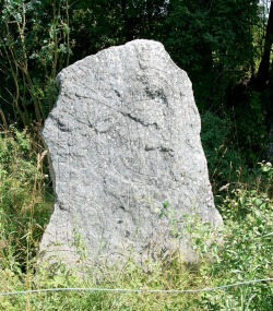 Uppsland Runestone #921