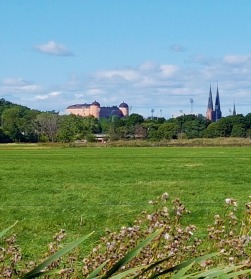 A nice view of castle and cathedral.