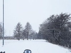Lots and lots of snow