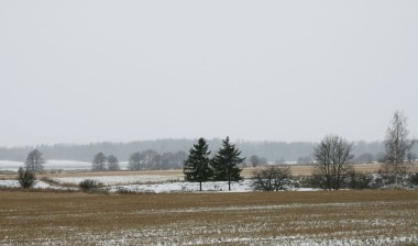 Distant views made hazy by the snow fall.