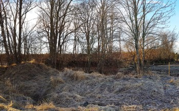 Another burial ground. Perhaps it's a burial mound on the left.