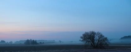 04-09-aa-misty-morning-1