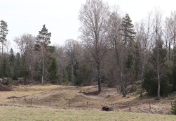 04-19 ca Burial Mound Maybe