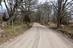 04-19 fb Dusty Lane 3