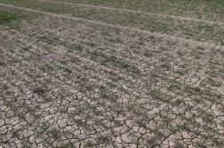 04-19 ja Looks Like Drought